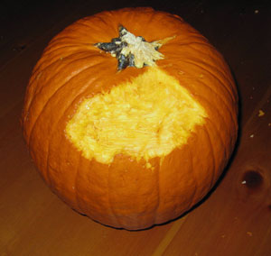 chloe-pumpkin